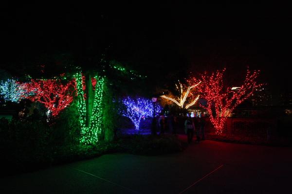 Atlanta Botanical Garden Lights Holiday Nights Tom Sullivan