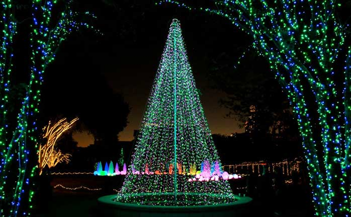 Atlanta botanical garden lights holiday nights tom sullivan for Botanical gardens atlanta lights