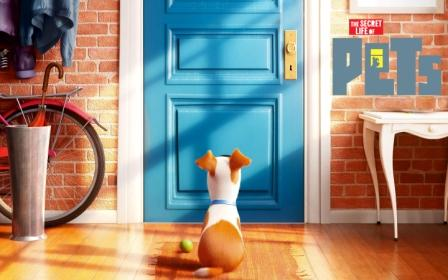 The-secret-life-of-pets-2015-disney-movies-wallpape1ar